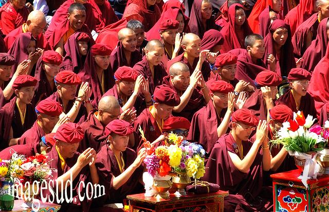 Moines bouddhistes en prière, bouddhisme tibétain, grande puja au Ladakh