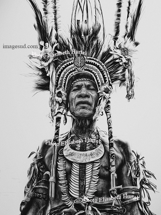 Old papuan warrior, bw portrait