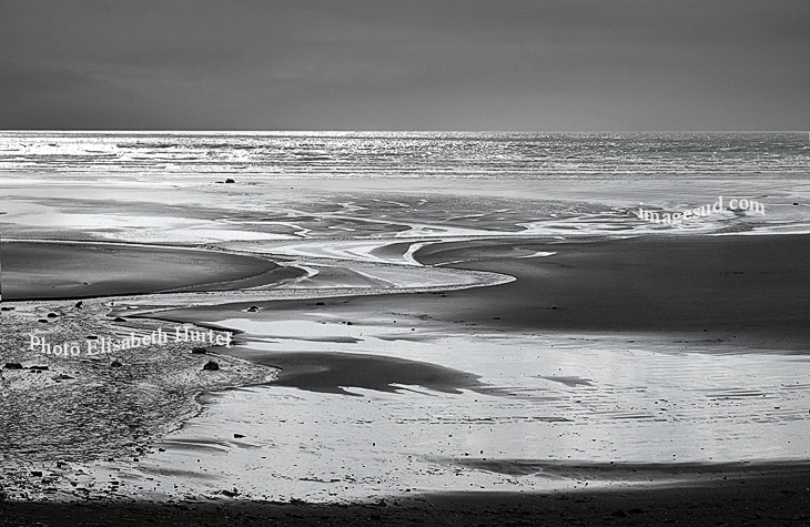 Low tide, bw art sea image