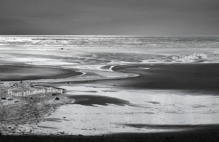 Low tide, bw art sea image