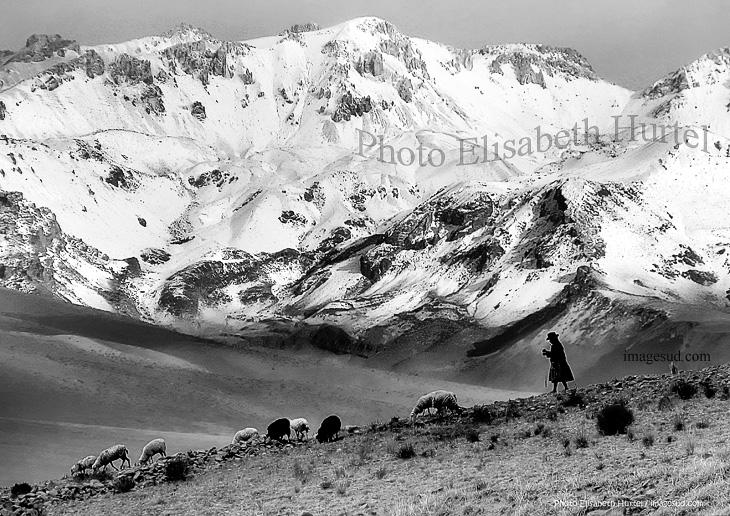 Paisaje de los Andes, Bolivia, America latina,  foto en blanco y negro