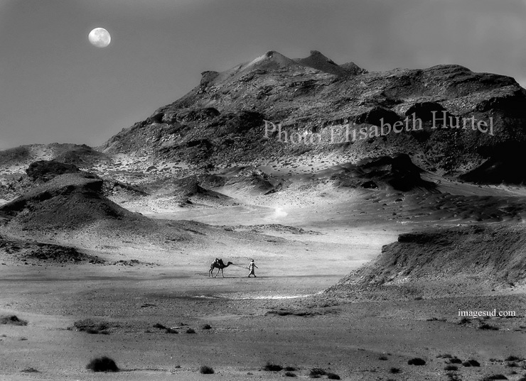 Desierto bajo la luna, paisaje de arte en blanco y negro