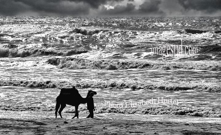 Al borde del mar, foto de paisaje marino en blanco y negro
