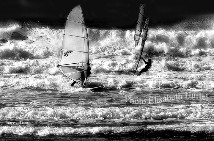 Paisaje marino, tablas de vela, olas, en blanco y negro