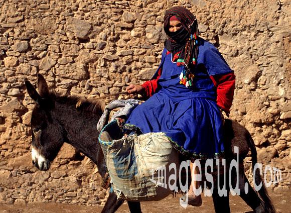 Retour des champs, femme sur son âne au Maroc