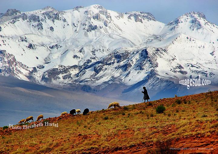 paysage des Andes, Bolivie