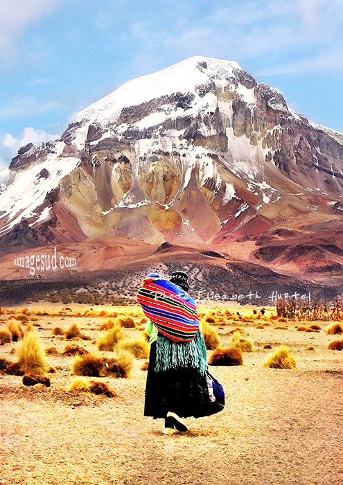 Au pied du volcan Sajama, paysage de Bolivie