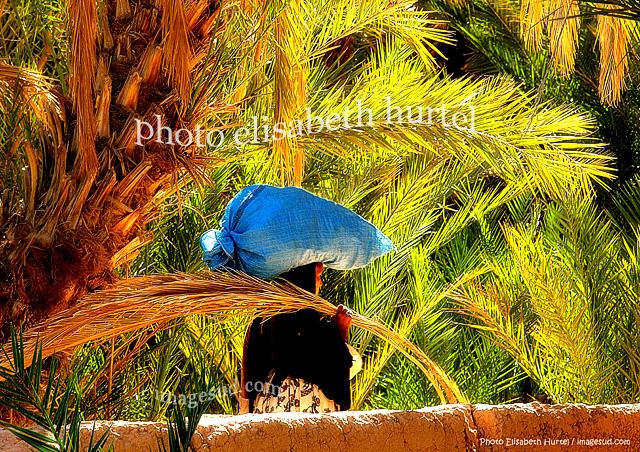Tirage fine art pour décoration : Oasis, tableau photo