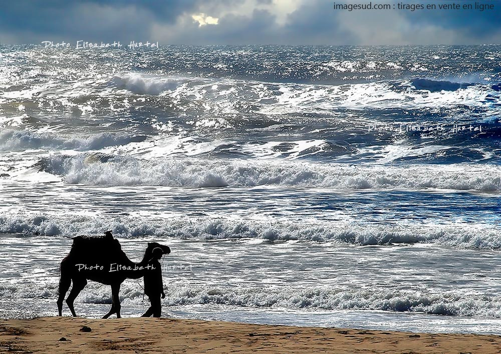 Photo de paysage marin