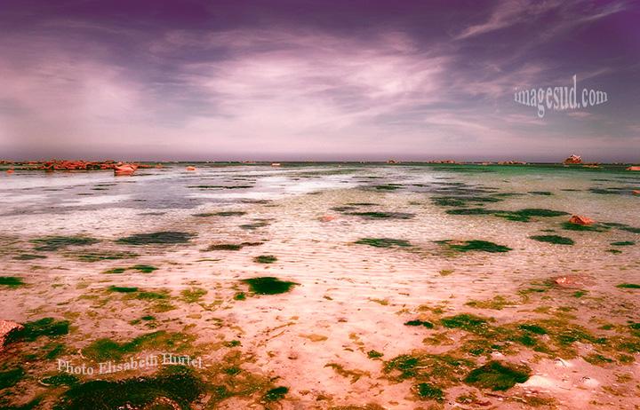 Paysage marin : marée basse en Cote d'Armor
