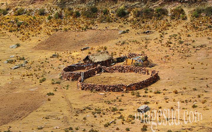 Bolivie : agriculture et élevage : toute petite ferme d'élevage de lamas avec ses corals en murs de pierre, altiplano des Andes de Bolivie