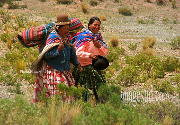 Bolivie : paysannes en route vers le marché, altiplano des Andes