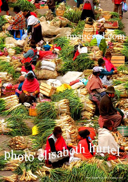 Marché indigène de légumes, vue générale, Andes, Equateur