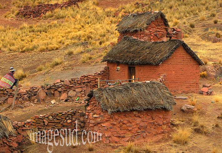 Habitat des Andes, Bolivie