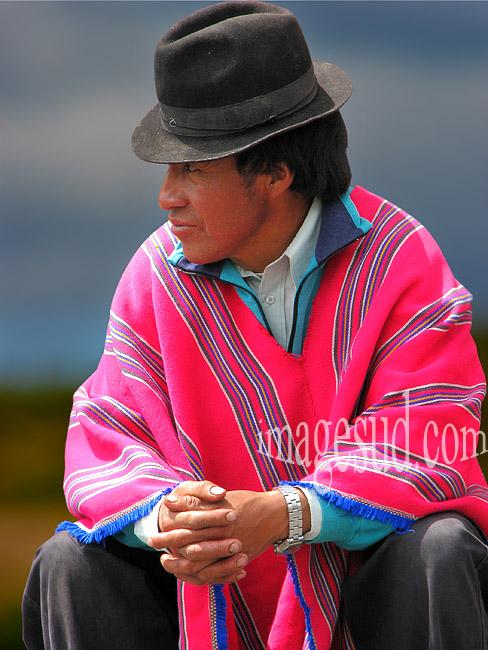 Indien des Andes, Amérique du sud
