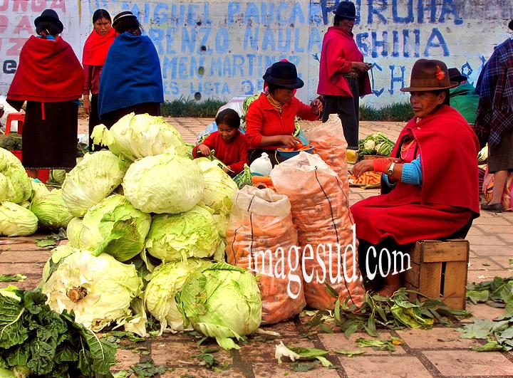 Marché indigène des Andes, peuple Puruha des Andes en Equateur, Amérique du sud