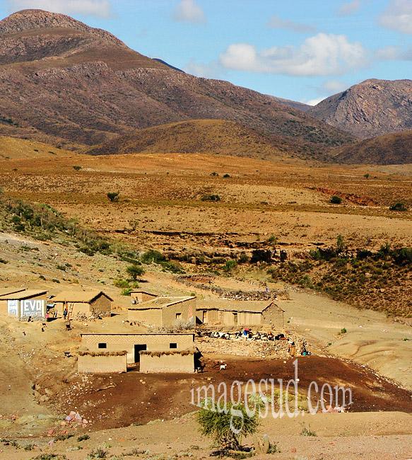 Paysage de l'altiplano des Andes en Bolivie