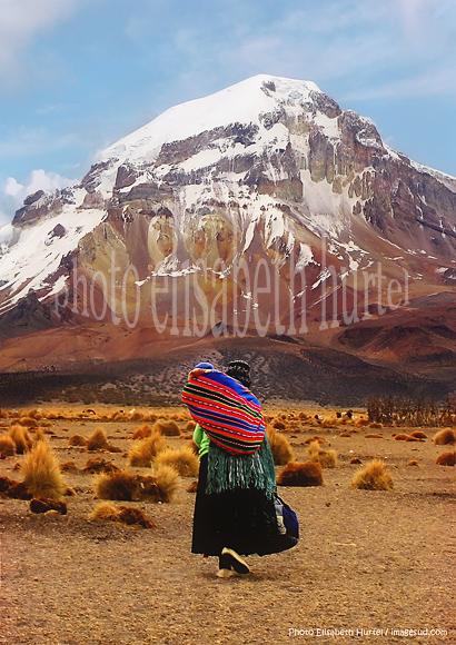 Bolivie : paysage des Andes