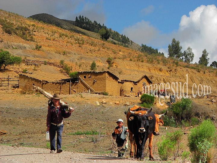 Paysan des Andes en Bolivie