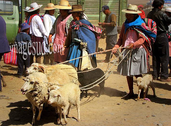 Bolivie : scène de marché