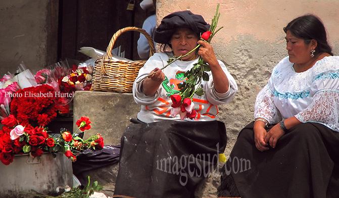 Equateur : Indiennes  d'Otavalo arrangeant des bouquets de roses, Andes, Amérique du sud
