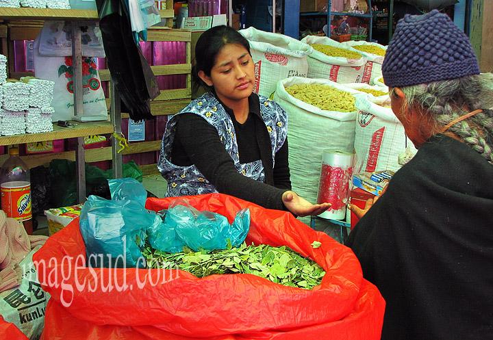 Marchande de feuilles de coca, marché de Bolivie