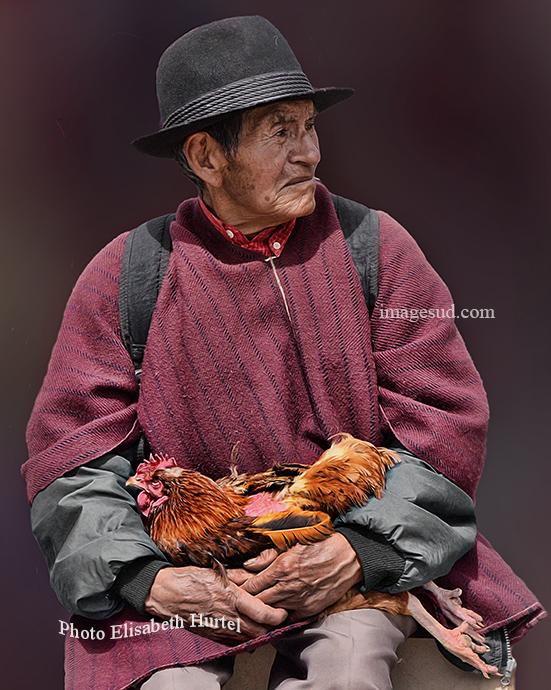 Le paysan et sa poule, scène de marché en Equateur. Market scene in Ecuador.