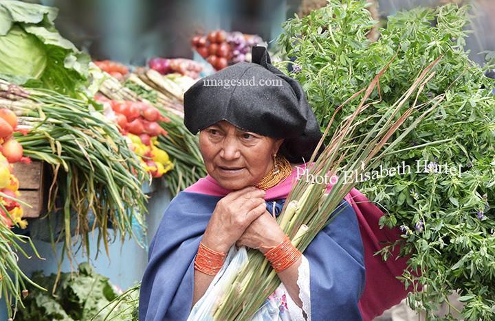 Ecuador : mercado indigena, indigenous market. Marché indigène en Equateur